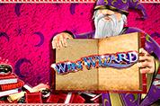 Автовой автомат Win Wizard