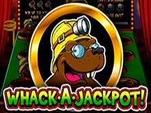 Whack А Jackpot