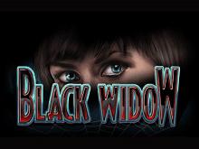 Черная Вдова популярный слот в Вегас Бонус клубе