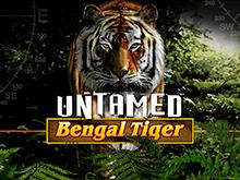 Дикий Бенгальский Тигр слот в Вулкан Бонус